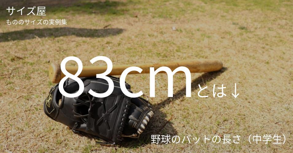 83cmとは「野球のバットの長さ(中学生)」くらいの高さです