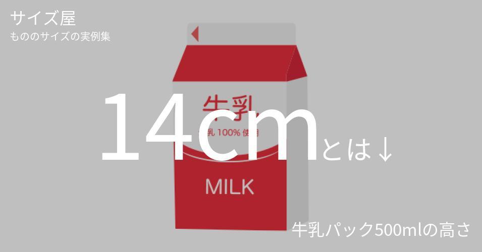 14cmとは「牛乳パック500mlの高さ」くらいの高さです